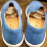 VLCR1006_BLUE